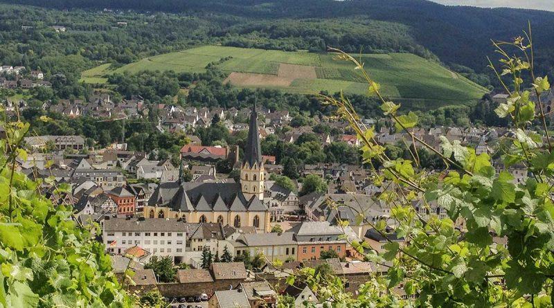 Wandern im Ahrtal auf Rotweinwanderweg und Ahrsteig