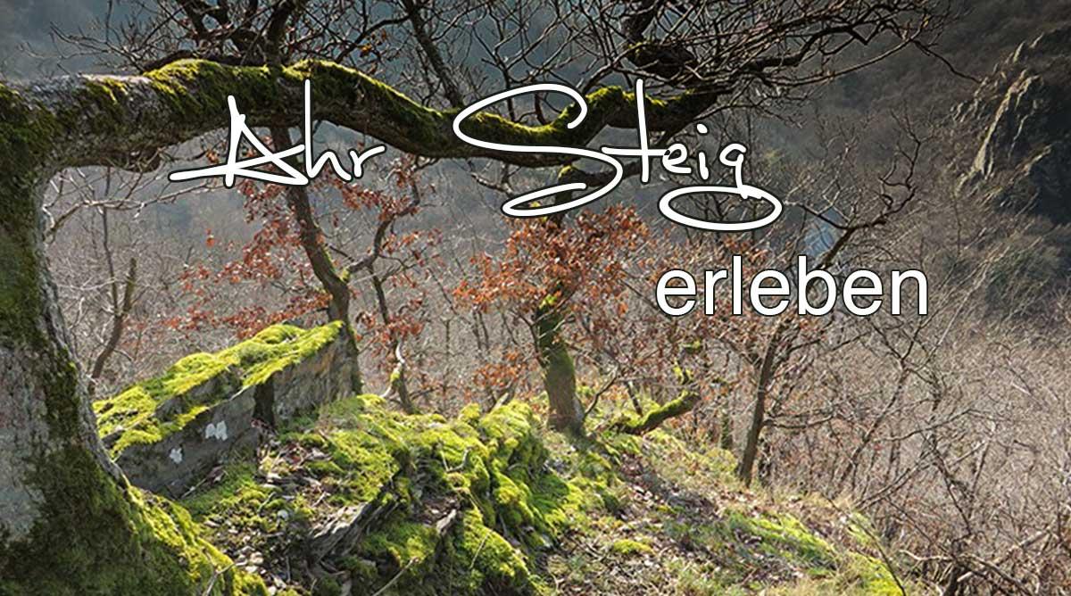AhrSteig erleben von Kreuzberg bis Walporzheim auf Etappe 5