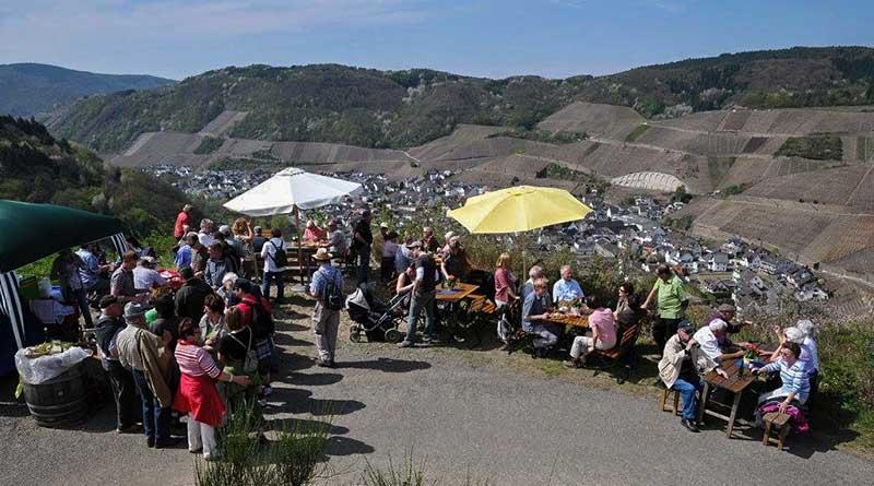 Wandern, Weinfeste und Veranstaltunge im Ahrtal an der Ahr