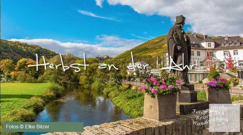 Herbst an der Ahr von Elke Bitzer für Ahrtalwandern