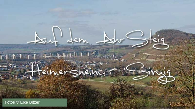 Auf dem Ahrsteig von Heimersheim bis Sinzig von Elke Bitzer für Ahrtalwandern
