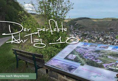 Der perfekte AhrTag 10 von Dernau nach Mayschoss @ Michael Lentz Ahrtalwandern 2019